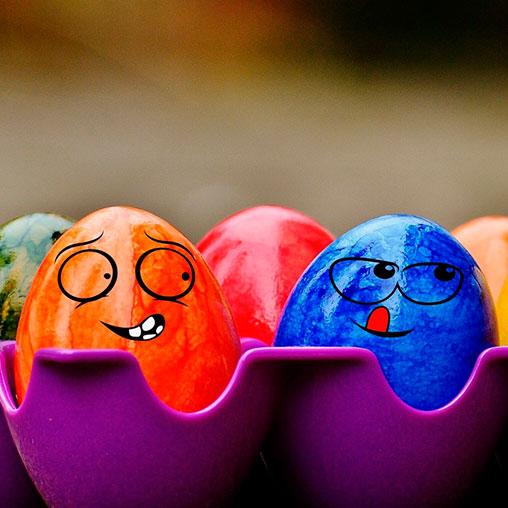 Яйца: польза или вред?