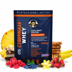 CyberMass: Whey Protein (1000 гр)